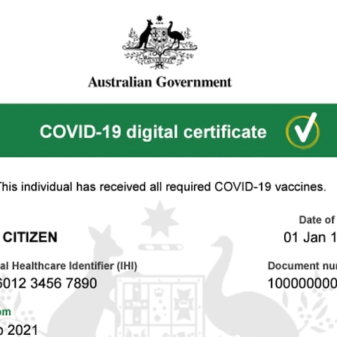 The digital version of the vaccination certificate can be edited relatively easily.