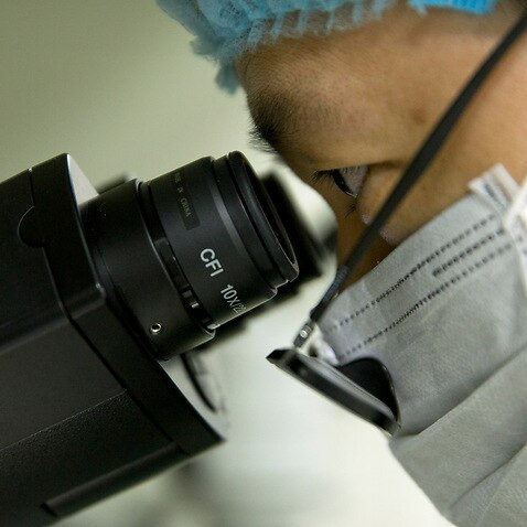 Scientist Qin Jinzhou looks through the lenses of a microscope in He Jiankui's lab in Guangdong, China.