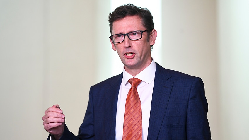 Labor's spokesperson on financial services, Stephen Jones, has called for tax evasion laws to be strengthened.