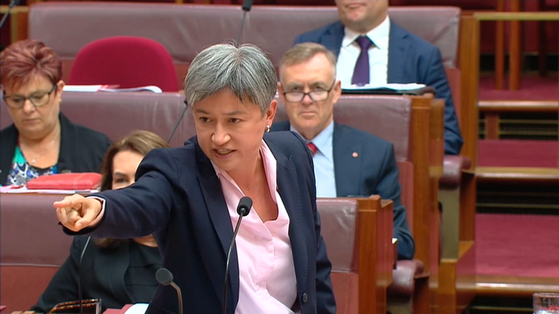 Senator Penny Wong wants the Prime Minister to call an election.