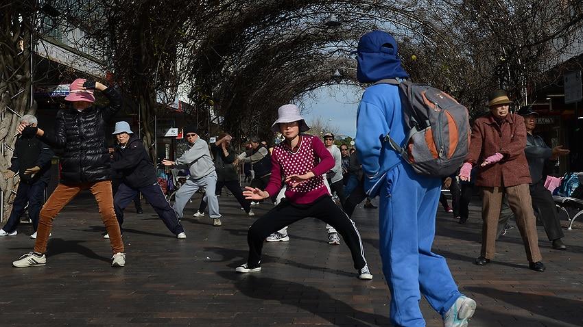 Tai chi may balance wobbly drivers: study