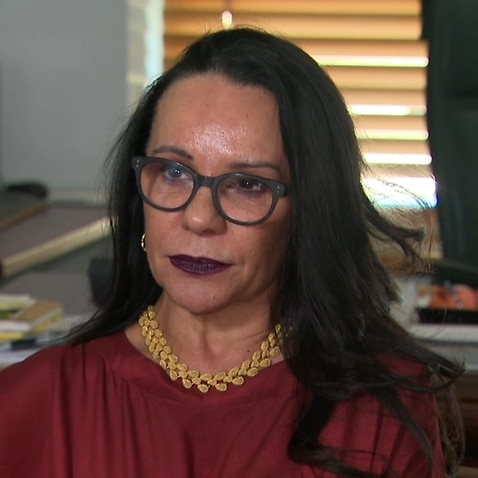 Labor MP Linda Burney says the federal government should seek to re-negotiate with the person who holds the copyright for the Aboriginal flag.