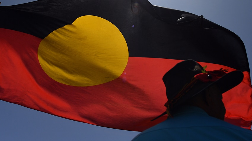 During NAIDOC Week the government votes against displaying Indigenous flags in the Senate – SBS News