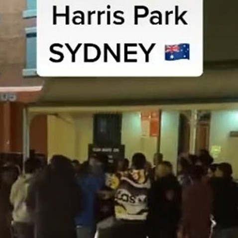 Harris pArk fight