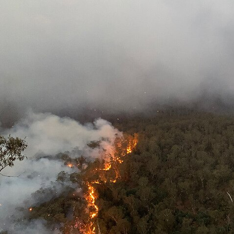 Fire activity in the Grose Valley, New South Wales.