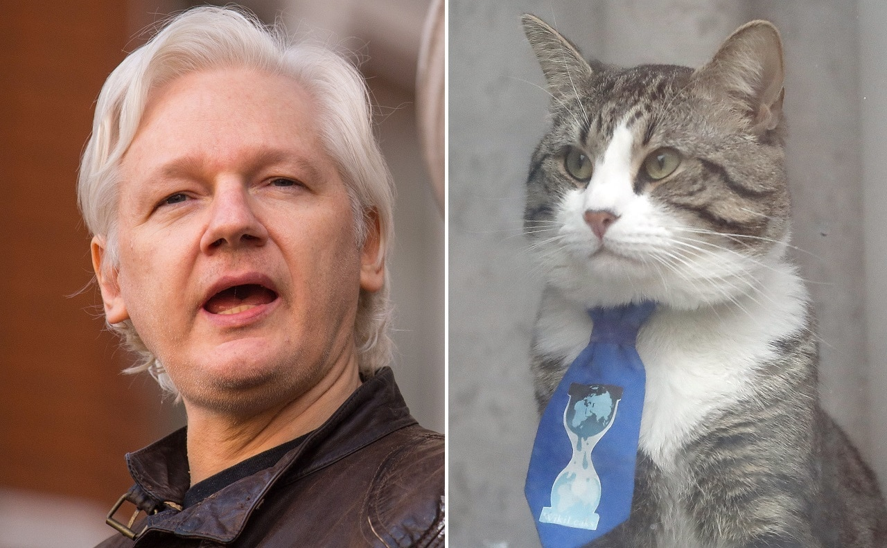 Assange must obey new rules to stay in London embassy, judge says