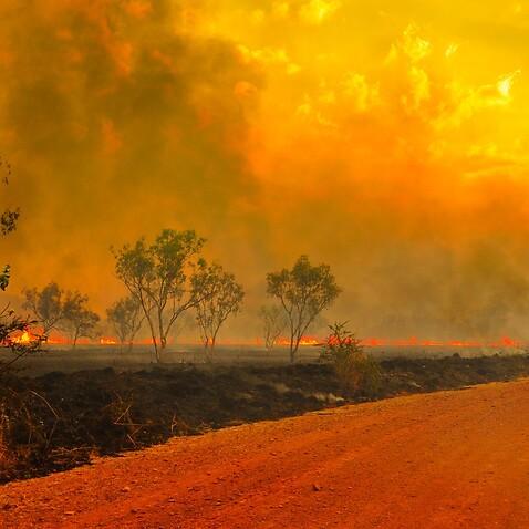 SG Bushfire season